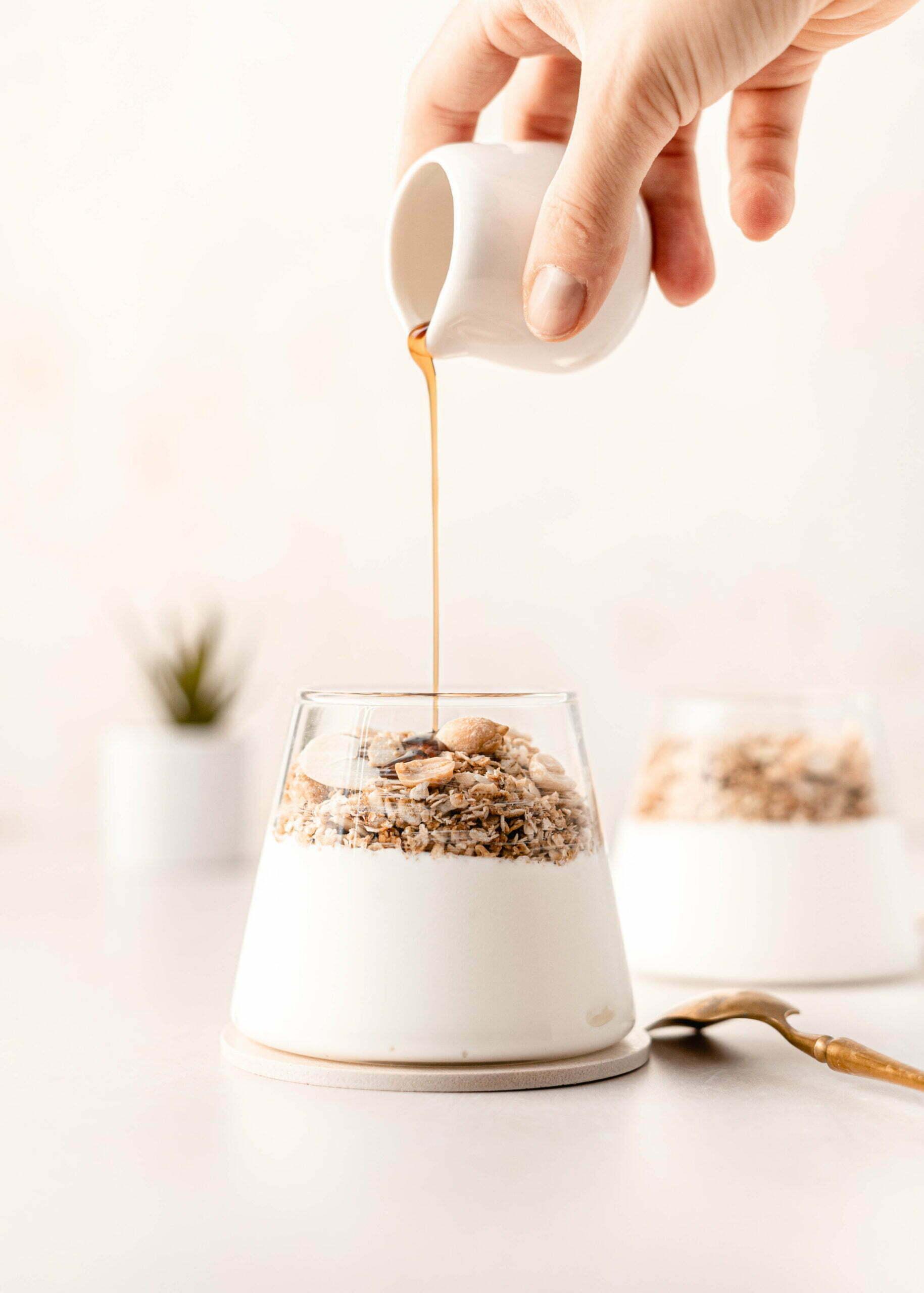 Jogurtov parfait z domačo granolo